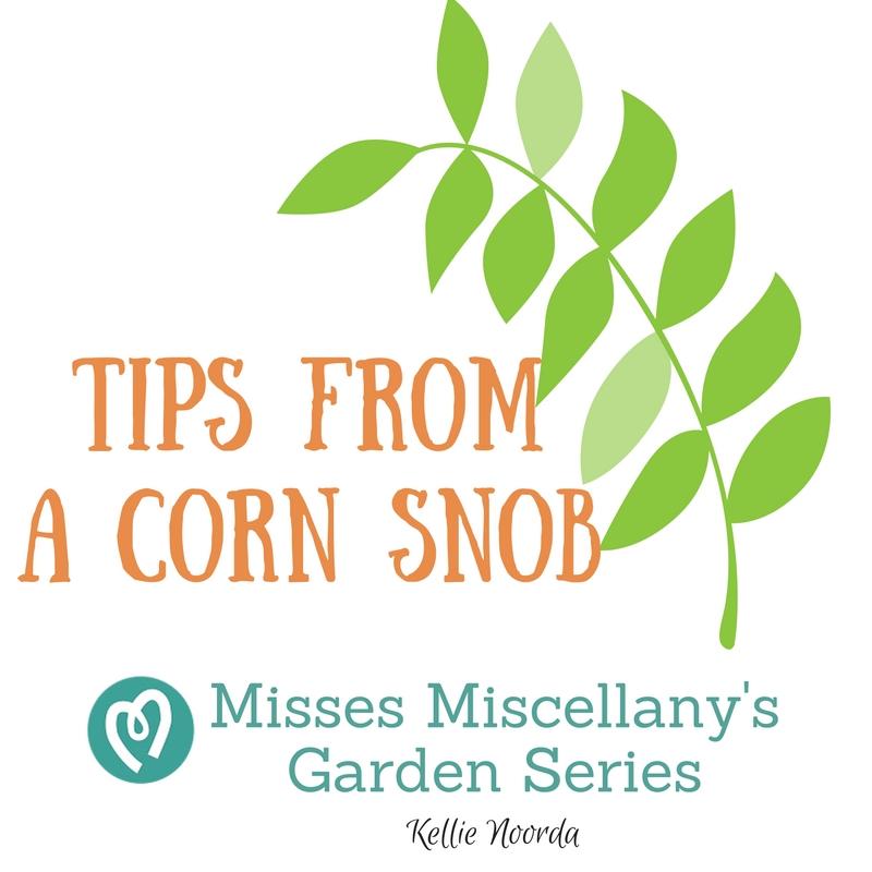 Misses Miscellany'sGarden Series.jpg