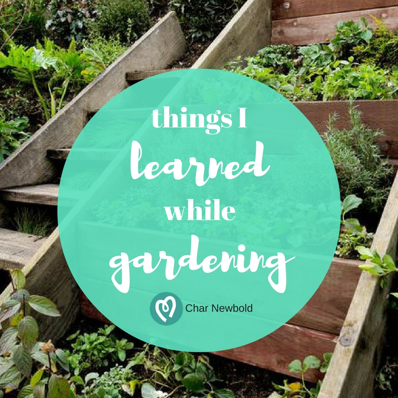 What I Learned from Gardening